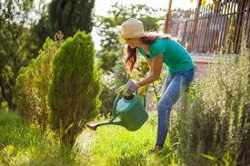 Jakie cechy powinna mieć dobra konewka ogrodowa?