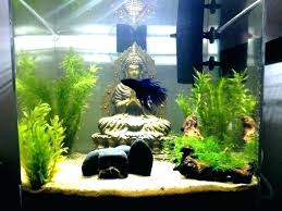 multiple betta tank 3 fish can you put in the same heating tanks multiple betta tank decor cool small fish