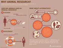 using animals in disease research argumentative essay should animals be used in research debates