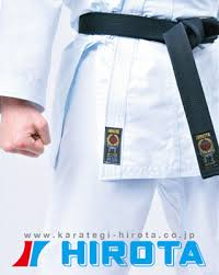 Hirota Pinack For Kumite Ready Made