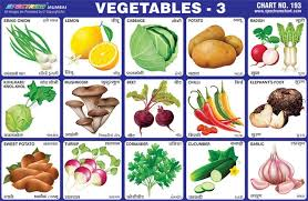 Vegetables Chart Educational Vegetables Charts School Stationery Wholesale