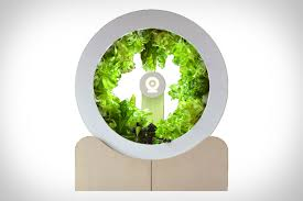 rotating indoor garden grows up to 100 herbs and vegetables every month
