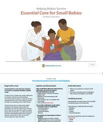 Essential Care For Small Babies Facilitator Flip Chart