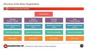 Structure Of Sales Organization Sales Organization Structure