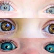 Baby Eye Chart Calculator Predicting My Babies Eye Color Newborn Eye Color Eyes