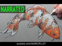 realistic koi fish drawing. Contemporary Drawing How To Draw A Fish  In Realistic Koi Drawing