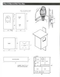 barred owl house plans luxury barred owl house plans luxury barn owl box plans sacdmods