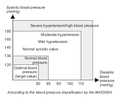Blood Pressure Chart For Women Blood Pressure Chart Weight Loss Resources
