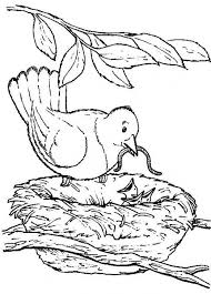 Small Picture Nature coloring pages bird nest ColoringStar