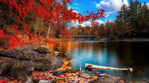 Fall Foliage Desktop Wallpapers (70+ ...