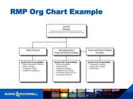 Risk Management Org Chart Reed Amy Burns Mcdonnell Risk Management Plans Common