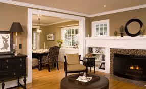 paint ideas for living roomAmazing Living Room Paint Colors