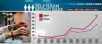 self harm incidents among female prisoners highest in prairies self harm behind bars