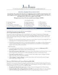 Digital Marketing Resume Sample Elegant Marketing Executive Resume
