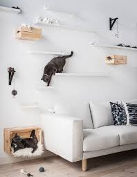 cats toys ideas two cats hanging out on diy cat shelves made using ikea mosslanda picture ledges at diffe distances and heights above a sofa ideal