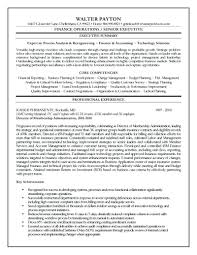 99 Executive Resume Word Template Executive Resume Template For