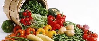 <b>Свекла Бордо</b> f1 | Интернет-магазин семян и товаров для дома и ...