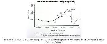 Insulin Needs During Pregnancy Chart Mentar