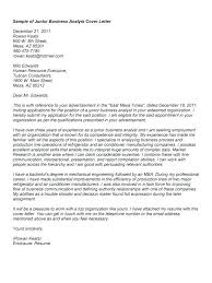 Systems Analyst Cover Letter Sample Resignation Letter For Kitchen