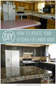 10 Modest Kitchen area Organization And DIY Storage Ideas 7. Replace  Kitchen CountertopsPainting ...