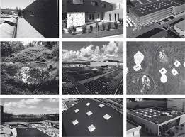 Willkommen | Flachdach - Begrünungen - Energie - Gewässer - Contec Ag