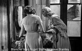 norman holland on elia kazan a streetcar d desire  blanche tells stella to leave stanley