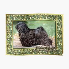 Hungarian Puli Dog Christmas