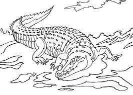 Crocodile 119 Animals Printable Coloring Pages