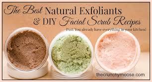 natural exfoliants scrub recipes thecrunchymoose com