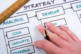 critically analysis of the development strategy followed in development strategy