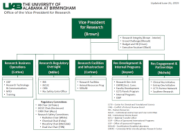 Organizational Chart For The Office Of The Vice President