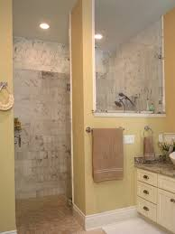 bathroom ideas corner shower design: doorless shower small bathroom designs corner