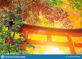 Maple With Wooden Red Gate Nature Of ...