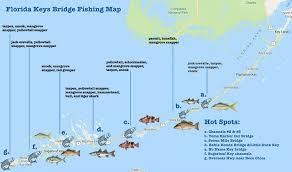 Tide Chart Key Largo Best Florida Keys Bridge Fishing Spots All You Need To Know