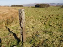 fence post. File:Old Fence Post - Geograph.org.uk 686337.jpg