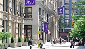 how to write the new york university essay