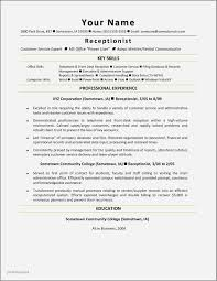 Resume Title Examples Stunning Resume Title Examples For Secretary Lovely Examples Resume Title