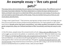 as a level business studies essay writing mr spicer ppt  an example essay are cats good pets the essay below demonstrates the principles