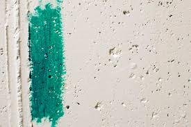 painting block wallA Cheap Way to Disguise a Cinder Block Wall  Saplingcom