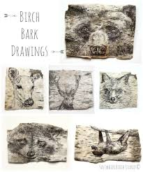 Birch Bark Drawings by Saltwater Birch Studio