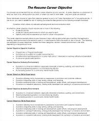 Good Summary For Resume Beauteous Good Resume Summary Example Of A Sample Objective 60 Examples In Word