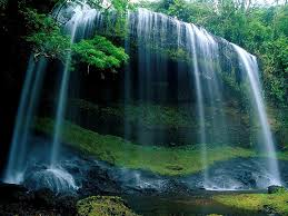 هل تحب الطبيعة ان كنت تحيبها فدخل images?q=tbn:ANd9GcT