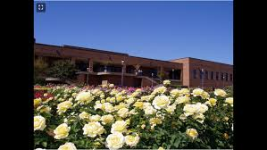 tyler rose garden named one of the great public places in texas