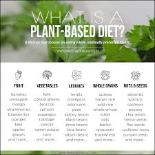 Plant Based Diet Chart What Is A Plant Based Diet