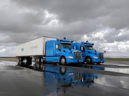 Driverless truck firms to watch: Tesla, Waymo, TuSimple and more ...