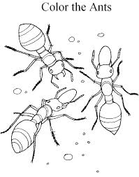 Small Picture Fire Ant coloring page Animals Town Free Fire Ant color sheet