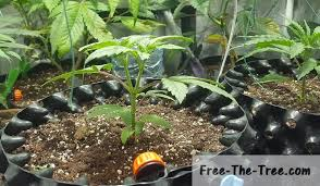 how to make an automatic watering system for