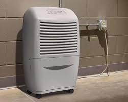 12 best dehumidifiers for basement