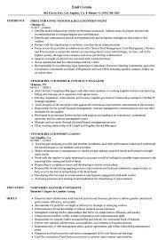 Relationship Resume Examples Vendor Relationship Resume Samples Velvet Jobs 19
