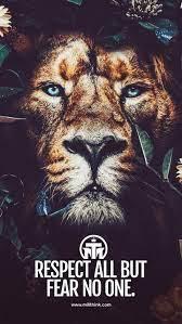 HD lion motivation wallpapers